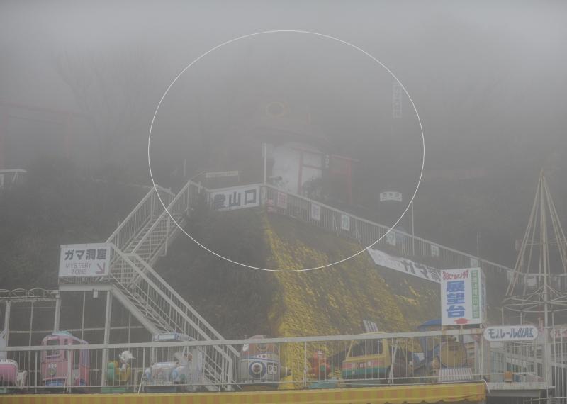 筑波山ドライブ紅葉(?)とガマ