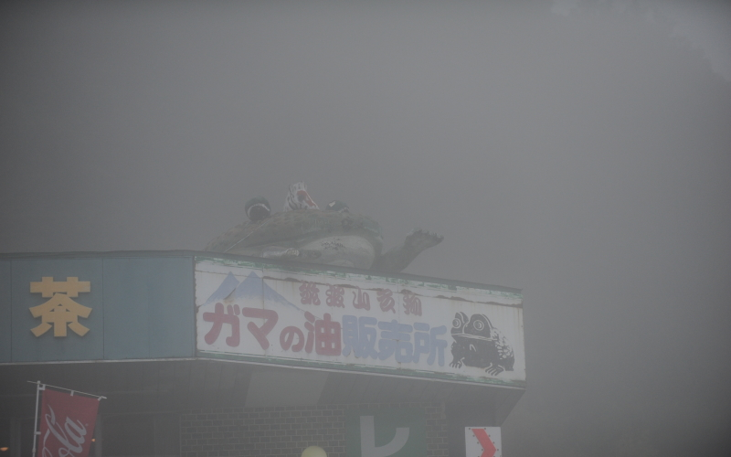 筑波山ドライブ 紅葉狩り?ガマ狩り?