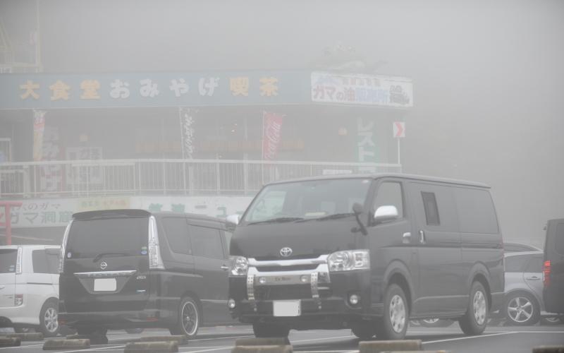 筑波山ドライブ 紅葉(?)とガマ
